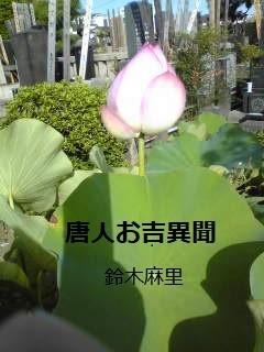 勝林寺の1本のハス (2).jpg
